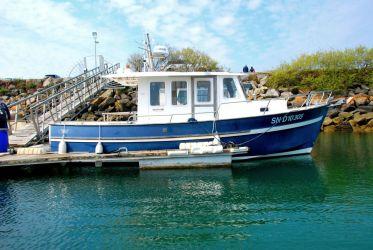 Annonce Rhéa marine RHÉA 850 TIMONIER d'occasion, Pornichet Yachting
